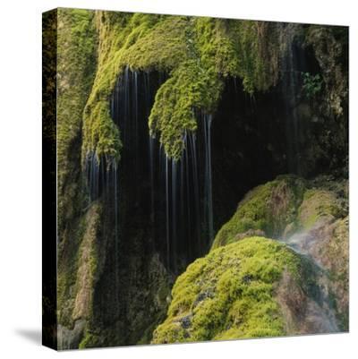 Water Running down Vegetation Covered Rocks