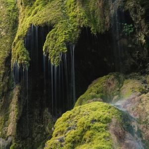 Water Running down Vegetation Covered Rocks by Micha Pawlitzki