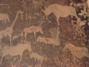 Petroglyphs of Animals Hunted by Bushmen, Twyfelfontein, Namibia by Michael and Patricia Fogden/Minden Pictures