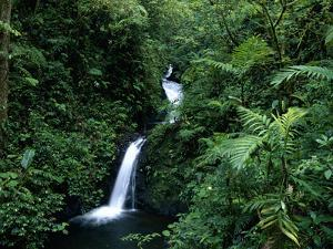 Waterfall, Monteverde Cloud Forest Reserve, Costa Rica by Michael and Patricia Fogden/Minden Pictures
