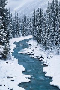 Bend in the North Saskatchewan by Michael Blanchette Photography