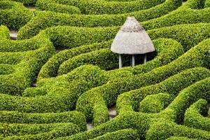 Green Maze by Michael Blanchette Photography
