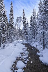 Mountain Wonderland by Michael Blanchette Photography