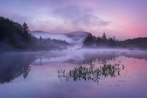 Pastel Morn by Michael Blanchette Photography