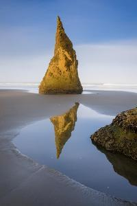 Pinnacle Reflection - Vertical by Michael Blanchette Photography