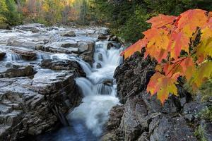 Rocky Gorge Autumn by Michael Blanchette Photography