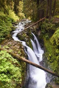 Sol Duc Falls by Michael Blanchette Photography
