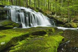 Spring At Tucker Brook by Michael Blanchette Photography
