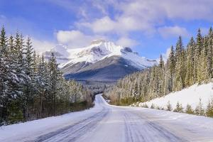 To the Mountain We Go by Michael Blanchette Photography
