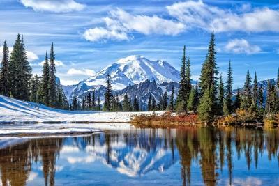 Mt. Rainier Vista