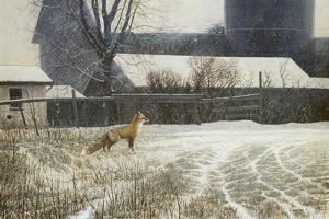 Where Paths Cross by Michael Budden
