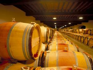 Cellars of Chateau Lynch Bages, Pauillac, Aquitaine, France by Michael Busselle