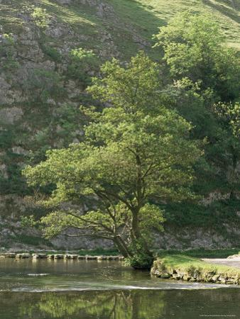 Dovedale (Dove Dale), Derbyshire, England, United Kingdom