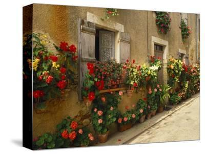 Exterior of a Rustic House Covered with Flowers, Landes, Aquitaine, France