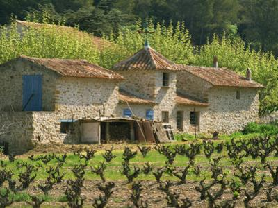 Exterior of a Stone Farmhouse in Vineyard Near Pierrefeu, Var, Provence, France, Europe
