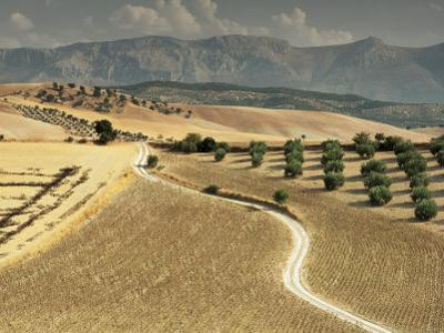 Landscape Near Jaen, Andalucia, Spain