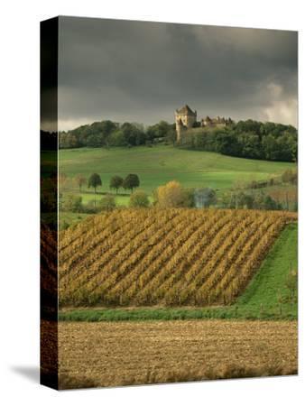Vineyards Near Lons Le Saunier, Jura, Rhone Alpes, France