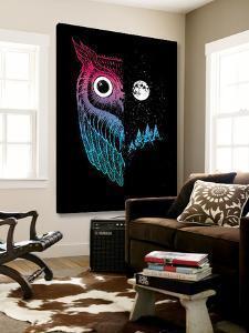 Night Owl by Michael Buxton