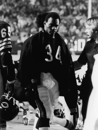 Walter Payton, Chicago Bears by Michael Cheers