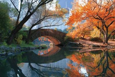 Gapstow Bridge, Fall