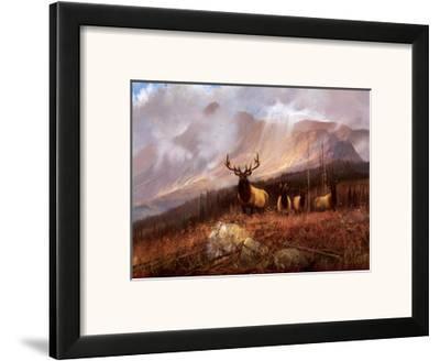 Bookcliffs Elk II