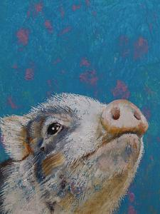 Baby Pig by Michael Creese