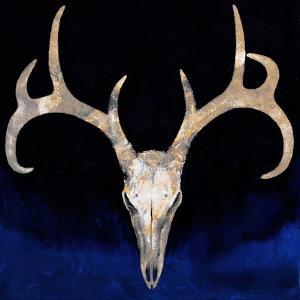 Deer Skull by Michael Creese