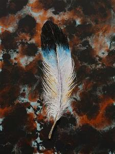 Feather by Michael Creese