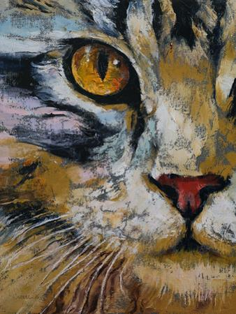 Maine Coon Cat by Michael Creese