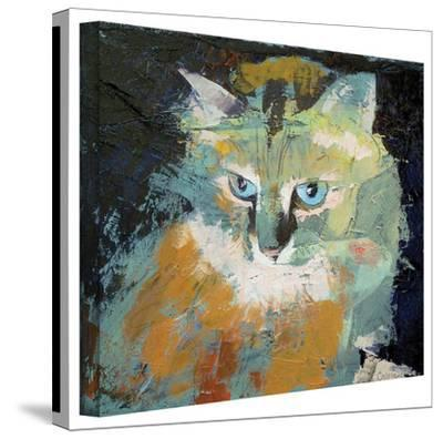 Michael Creese 'Himalayan Cat' Gallery-Wrapped Canvas by Michael Creese