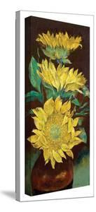 Michael Creese 'Sunflowers' Gallery-Wrapped Canvas by Michael Creese