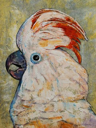 Moluccan Cockatoo by Michael Creese