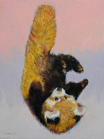 Red Panda Cub by Michael Creese
