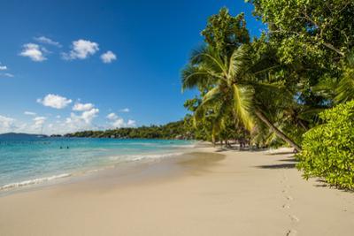 Anse Lazio Beach, Praslin, Republic of Seychelles, Indian Ocean. by Michael DeFreitas