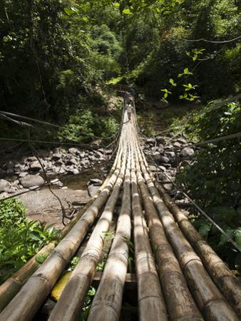 Bamboo Bridge at Dark View Falls, St. Vincent and the Grenadines, Windward Islands by Michael DeFreitas