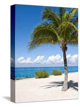 Beach at Chankanaab Park, Isla De Cozumel, Cozumel, Off the Yucatan, Mexico