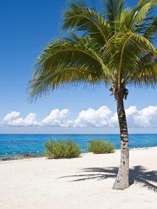 Beach at Chankanaab Park, Isla De Cozumel, Cozumel, Off the Yucatan, Mexico by Michael DeFreitas