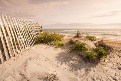 Beach Near Kitty Hawk, Outer Banks, North Carolina, United States of America, North America
