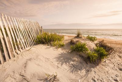 Beach Near Kitty Hawk, Outer Banks, North Carolina, United States of America, North America by Michael DeFreitas