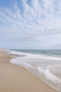 Beach Near Kitty Hawk, Outer Banks, North Carolina by Michael DeFreitas