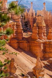 Bryce Canyon National Park Utah by Michael DeFreitas