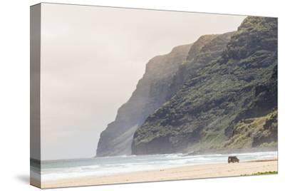 Cliffs at Polihale Beach Polihale State Park, Kauai, Hawaii