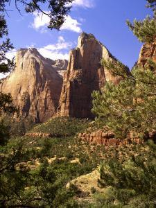 Court of The Patriarchs, Zion National Park, Utah, USA by Michael DeFreitas