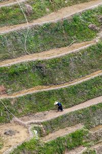 Dragon Spine Rice Terraces, Longsheng, China by Michael DeFreitas