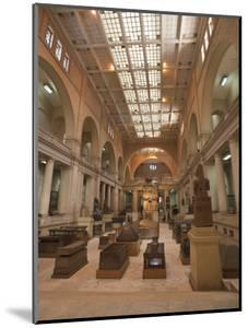 Egyptian Museum, Cairo, Egypt, North Africa, Africa by Michael DeFreitas