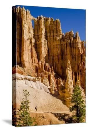 Hiking in Bryce Canyon National Park Utah, United States of America, North America