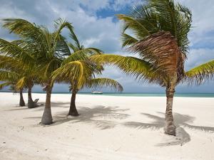 Isla Pasion (Passion Island) Off Isla De Cozumel, Cozumel, Mexico, North America by Michael DeFreitas