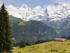 Jungfrau Massif From Murren, Jungfrau Region, Switzerland, Europe by Michael DeFreitas