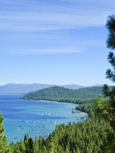 Lake Tahoe Scene, California, United States of America, North America by Michael DeFreitas