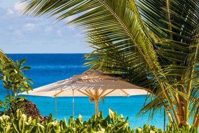 Petit Anse Beach, Mahe, Republic of Seychelles, Indian Ocean. by Michael DeFreitas